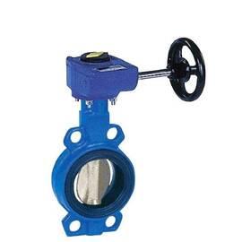 Затвор дисковой VFY-WG Ду 100, Ру 16,с редуктором, корпус-чугун (GG25),диск-нерж.сталь;EPDM;Т=130°С, фото